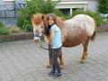 kind-mit-pony02