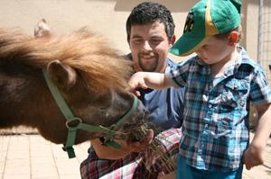 family-farm-junge-fuettert-pony