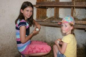 hof-zwei-maedchen-suchen-eier