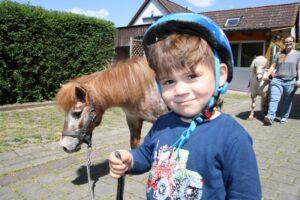 Ponys zum Spielplatz führen